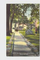 PPC POSTCARD FLORIDA WINTER PARK ROLLINS COLLEGE WALK OF FAME