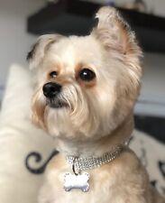 Beautiful rhinestone crystal puppy dog cat kitten collar XXS- XS 15cm Diameter💎