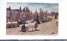 Navajo Girls Milking Goats Yei-Be-Chi Rocks in Background  Unused  Postcard 5294