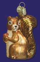 SQUIRREL OLD WORLD CHRISTMAS GLASS WILDLIFE NATURE ANIMAL ORNAMENT NWT 12080