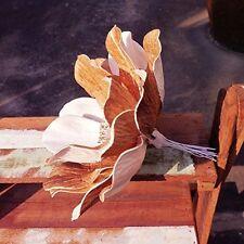 3 Magnolia Sola Wood Diffuser Flowers 15 cm Dia.