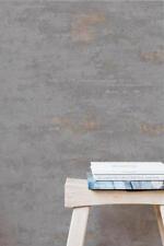 EUR 3,56/qm /Vliestapete Vertical Art Orion ON 4201 Betonoptik Beton Grau Kupfer