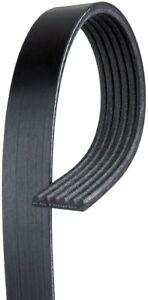 Serpentine Belt-Standard ACDelco Pro 6K910