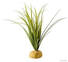 Exo Terra Turtle Grass - Aquatic Reptile Plant