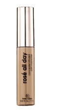 Femme Couture Rose All Day Concealer Light