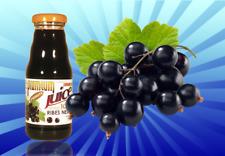 12x jus de Cassis 200 ml. Premium Fruit Italie naturel et pur sans sucre ni eau
