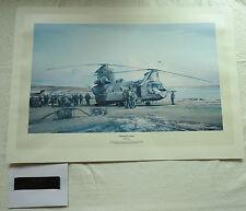 Robert Taylor Print Corporate Action RAF Signed,Air Marshall Sir Eric Dunn (3468