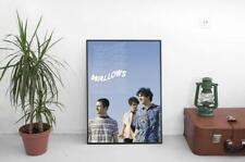 Wallows Poster