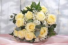 FRESH REAL FLOWERS Delivered 12 White ROSES FREE UK Next Day Delivery by post