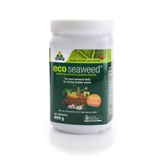 Eco Seaweed - Concentrated Powder - Organic Seaweed Extract 100% soluble