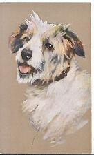 Animal Postcard - Dog - Head and Shoulders  ZZ3837