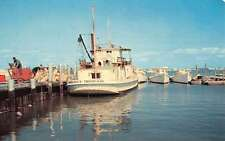 Tangier Island Virginia Harbor Boat Waterfront Vintage Postcard K54519