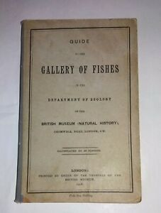 Gallery of fishes  of the Depertment of Zoology of of the British Museum, 1908