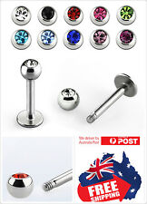 Stainless Steel 16g 14g Labrets Tragus Studs with color Ball  Monroe Lip Earring