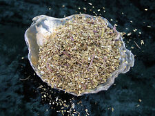 Meadowsweet herb Spells Herbs Spell Supplies Pagan Wiccan Incense witchcraft