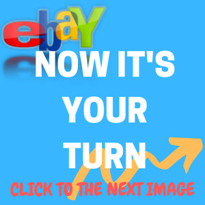 Website Designed and Built - Stocked with Products - Choose From 1000 Markets