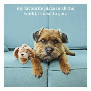 Curious World 'Next To You' Humorous Greetings Card -16cm x 16cm