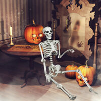 5.4ft Halloween Skeleton Life Size Realistic Full Body Hanging w/ Movable Joints