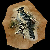 Southwestern Art Blue Jay On Pine Bough & Snow Hand Painted Signed On Sandstone