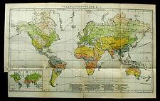 1893.Mappa Geo-Topografica.GEOGRAFIA DELLE PIANTE NEL MONDO I-II.Brockhaus.ETNA