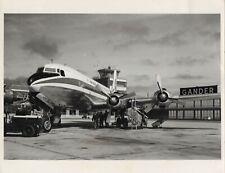 LARGE ORIGINAL VINTAGE PHOTO - PAN AMERICAN DC-6B AT GANDER