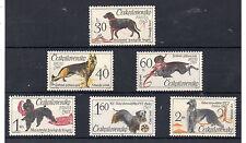 Checoslovaquia Fauna Perros serie del año 1965 (BX-548)