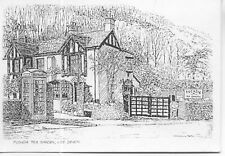 Fuschia Tea Garden Lee Ilfracombe Devon Grahame Penn sketch postcard