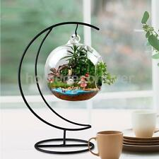 Moon Shape Metal Hanging Plant Stand Holder Landscaping Craft Display Decor