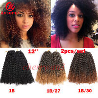 "2PC/SET 12"" MALI BOB Curly Hair Braids Crochet Twist Synthetic Hair Extension"