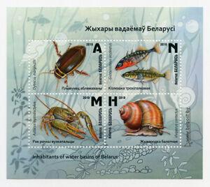 Belarus 2019. Inhabitants of reservoirs of Belarus. Mini Sheet. MNH **
