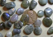 "50 Common Labradorite Tiny Tumbled Mini-Stones: 1/3"" to 1/2 inch long- Undrilled"