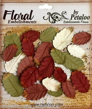 Darjeeling LEAVES Paper MIXED 24 Pieces Med 15x30mm & 25x35mm Petaloo