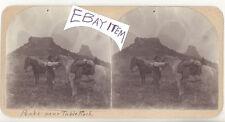 RARE STEREOVIEW TABLE ROCK ARIZONA TERRITORY circa 1890 HORSES MINER
