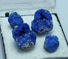 >>>Azurit-Kristalle/Drusen<<<>>Top-Sammlerstück!! <<