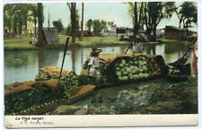 Fruit & Vegetable Boats La Viga Canal Mexico 1907c postcard