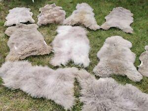 Real Eco Sheep Skins Lambskin Sheepskin Fur Taupe To 55 1/8in 2.Wahl Bargain