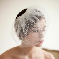 Wedding Headdress Bridal Net Birdcage Face Veil Fascinator Hair Comb WH1