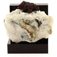 Cuivre natif et Cuprite sur Quartz. 253.5 ct. Mont-Roc Mine, France. Ultra Rare