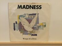 "Madness ‎– Wings Of A Dove - 7"" Vinyl Single in Picture Sleeve 1983 - REF 7122"