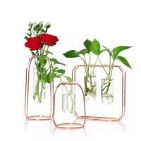 Vase Mural Pot de Fleur en Verre Transparent Terrarium Hydroponique Avec