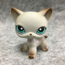 Littlest Pet Shop LPS Toys Grey Short Hair Cat Blue Eyes Loose  Figure