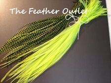Lot 10 Grizzly Feathers Hair Extensions long thin skinny striped Real NEON GREEN