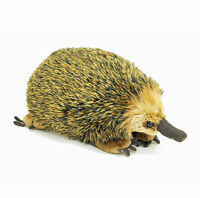 "Echidna Lifelike large soft plush toy Australian animal 12""/30cm by Korimco NEW"