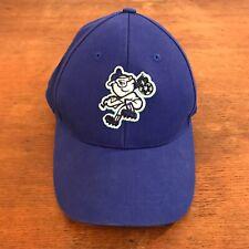 MiLB Asheville Tourists Blue Cotton Strapback Baseball Cap Toddler Size CH38