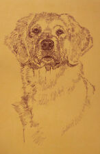 GOLDEN RETRIEVER DOG ART PORTRAIT #237 Kline adds your dogs name free. GIFT