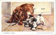 M. Gear - Cute Dogs Playing w/ Leash - Sealyham Terrier & Red Cocker Spaniel