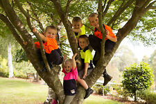 Little Workers Clothing Hi-Vis Workshirt for kids avail in Pink, Yellow & Orange