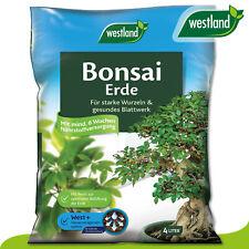 Westland 4L Bonsai Erde »Die Nummer 1 in England für den Garten« Nährstoffe