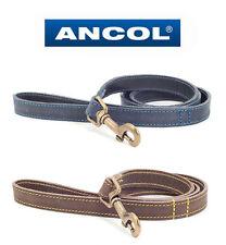 Ancol Timberwolf Leather Dog Lead Blue 1m X 19mm