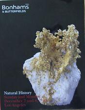 BONHAMS Natural History – Martian meteorite